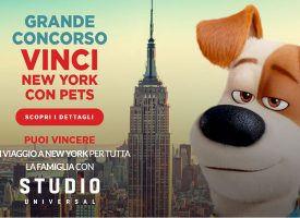 Vinci New York con Media World e Pets