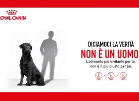 Diventa Ambassador Royal Canin e vinci un weekend in Camargue