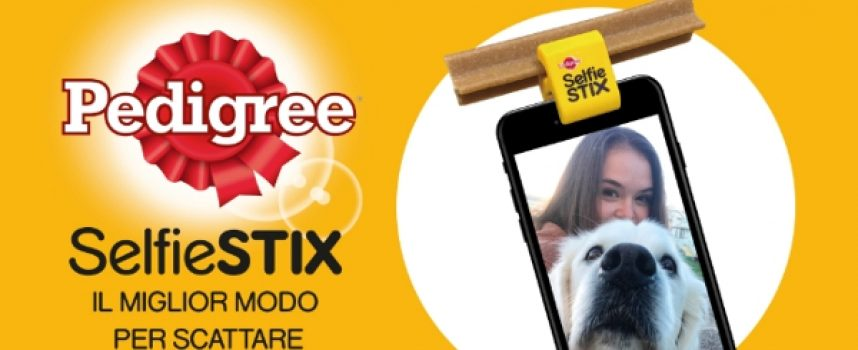 Candidati su The Insiders e partecipa al progetto Pedigree Dentastix